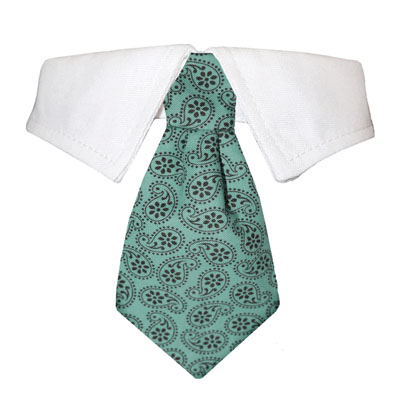 Pooch Outfitters Shirt Collar with Detachable Necktie, Aiden, XX-Small/X-Small