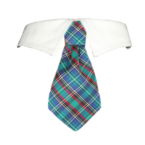 Pooch Outfitters Shirt Collar with Detachable Necktie, Eli, XX-Large