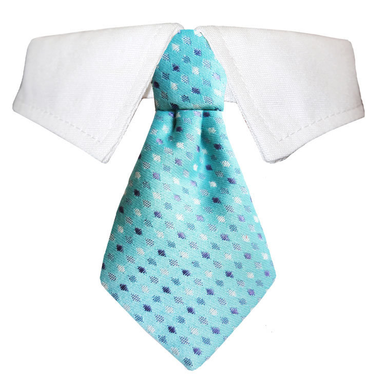 Pooch Outfitters Shirt Collar with Detachable Necktie, Adrian, 3X-Large