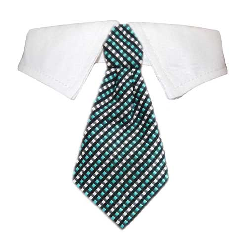 Pooch Outfitters Shirt Collar with Detachable Necktie, Benjamin, XX-Large