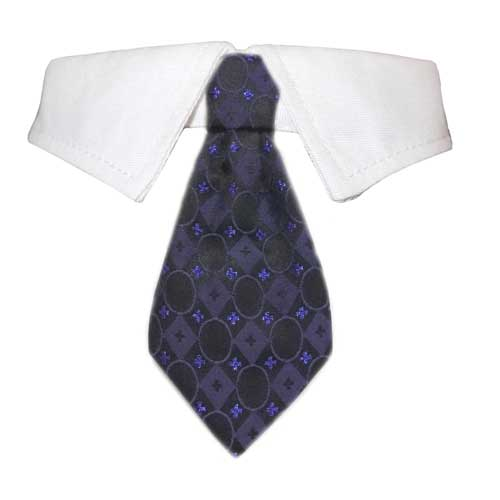 Pooch Outfitters Shirt Collar with Detachable Necktie, Daniel, XX-Large
