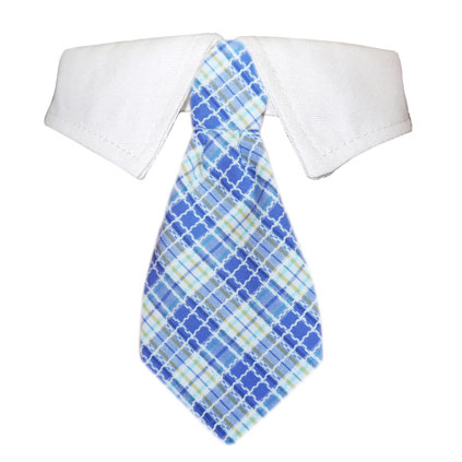 Pooch Outfitters Shirt Collar with Detachable Necktie, Kevin, XX-Small/X-Small