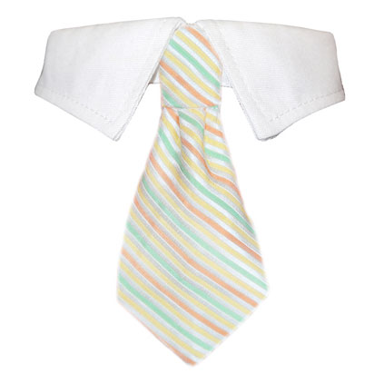 Pooch Outfitters Shirt Collar with Detachable Necktie, Parker, Small/Medium