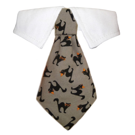 Pooch Outfitters Shirt Collar with Detachable Necktie, Blackie, Small/Medium