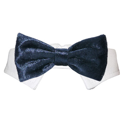 Pooch Outfitters Shirt Collar with Detachable Bow Tie, Roberto Navy, 3X-Large