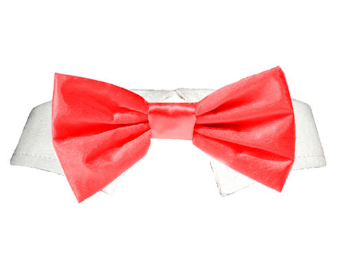 Pooch Outfitters Shirt Collar with Detachable Bow Tie, Satin Red, Small/Medium
