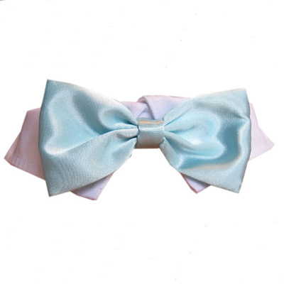 Pooch Outfitters Shirt Collar with Detachable Bow Tie, Satin Aqua, Large/X-Large