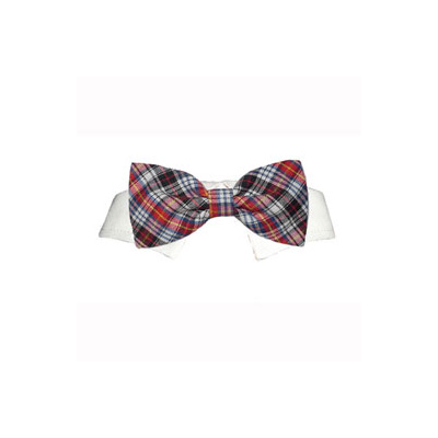 Pooch Outfitters Shirt Collar with Detachable Bow Tie, Samuel, Large/X-Large