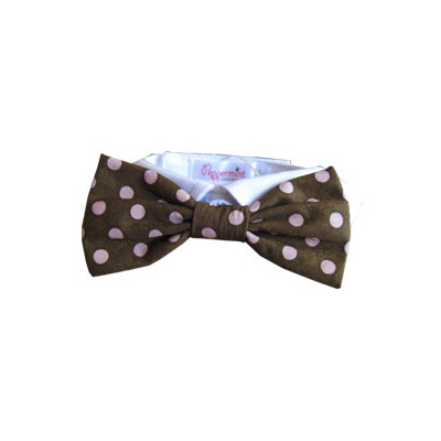 Pooch Outfitters Shirt Collar with Detachable Bow Tie, Colin, XX-Small/X-Small
