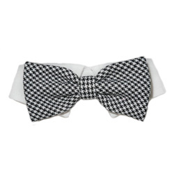 Pooch Outfitters Shirt Collar with Detachable Bow Tie, Michael, XX-Small/X-Small