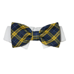 Pooch Outfitters Shirt Collar with Detachable Bow Tie, Bruce, Small/Medium