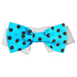Pooch Outfitters Shirt Collar with Detachable Bow Tie, Conner, XX-Small/X-Small