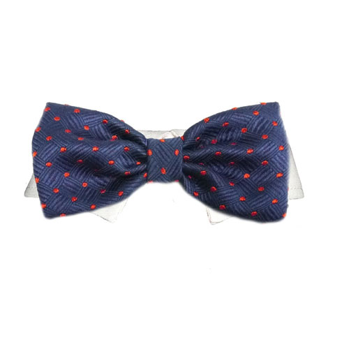Pooch Outfitters Shirt Collar with Detachable Bow Tie, Andrew, XX-Large