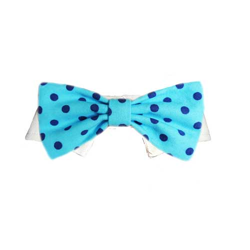 Pooch Outfitters Shirt Collar with Detachable Bow Tie, Easton, Small/Medium