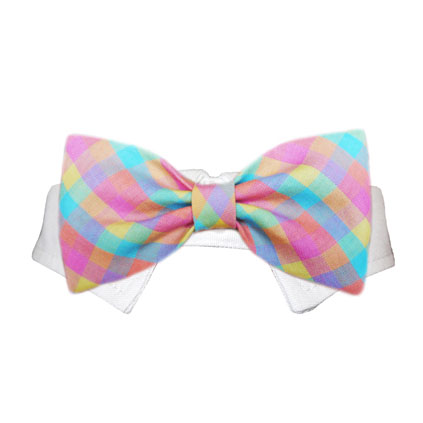 Pooch Outfitters Shirt Collar with Detachable Bow Tie, Riley, Small/Medium