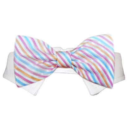 Pooch Outfitters Shirt Collar with Detachable Bow Tie, Morgan, Large/X-Large