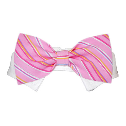 Pooch Outfitters Shirt Collar with Detachable Bow Tie, Ryan, Small/Medium