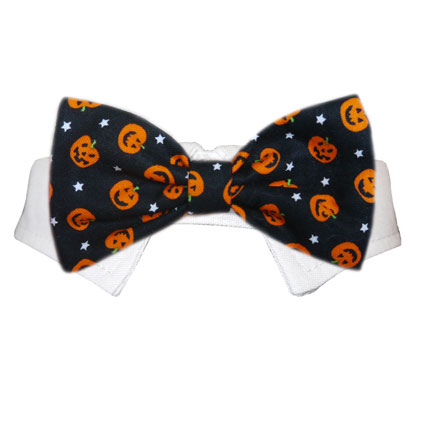 Pooch Outfitters Shirt Collar with Detachable Bow Tie, Pumpkin, Small/Medium