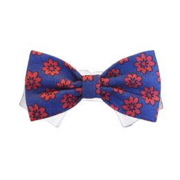 Pooch Outfitters Shirt Collar with Detachable Bow Tie, Preston, Small/Medium