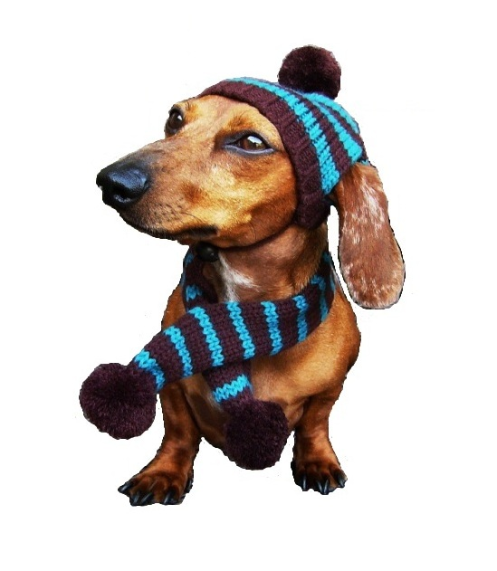 Dallas Dogs Knitted Hat & Scarf, Turquoise & Brown Striped, Medium