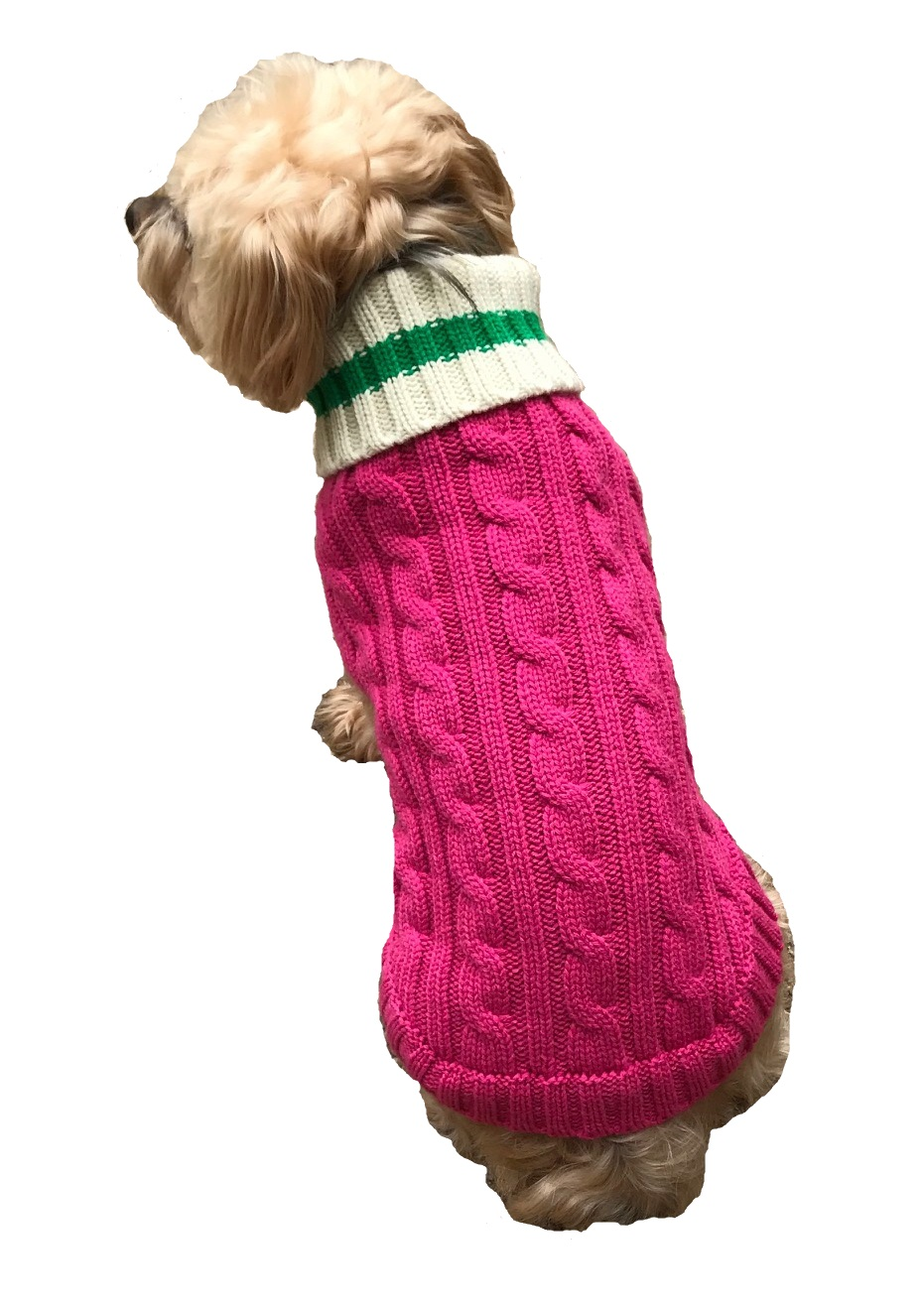 Dallas Dogs Sweater, Preppy Pup Hot Pink & Green, 10-in