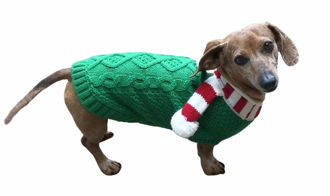 Dallas Dogs Sweater, Green with Candy Cane Scarf, 8-in