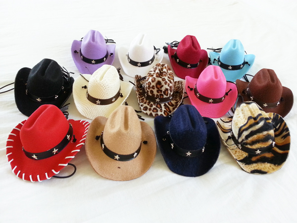 PAMPET / Puppe Love Cowboy Hat For Dogs, Light Blue Straw