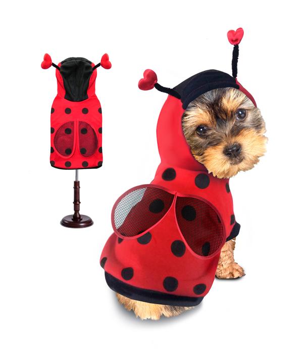 PAMPET / Puppe Love Dog Costume, Ladybug, Size 0