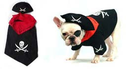 PAMPET / Puppe Love Dog Costume, Pirate, Size 2