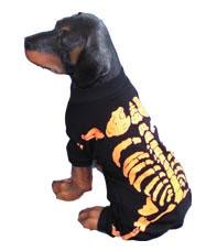 PAMPET / Puppe Love Dog Costume, Skeleton Orange, Size 1