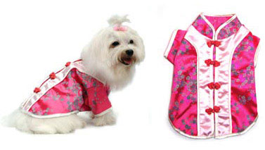 PAMPET / Puppe Love Dog Costume, Chinese Cutie, Size 3