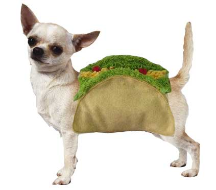 PAMPET / Puppe Love Dog Costume, Taco, Size 0
