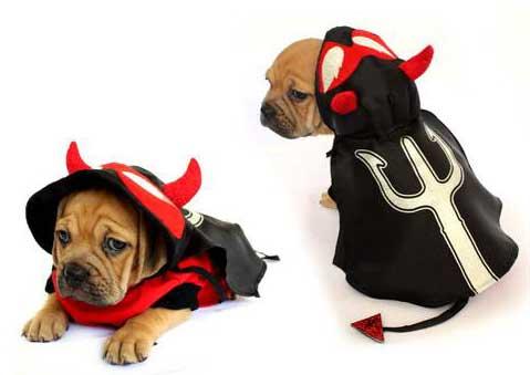 PAMPET / Puppe Love Dog Costume, Devil, Size 1
