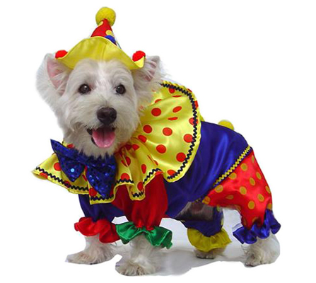 PAMPET / Puppe Love Dog Costume, Shiny Clown, Size 3