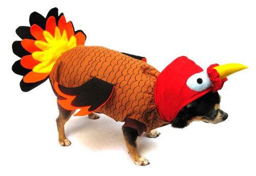 PAMPET / Puppe Love Dog Costume, Turkey, Size 0
