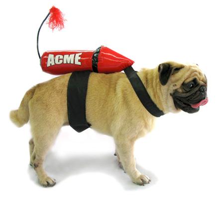 PAMPET / Puppe Love Dog Costume, Acme Rocket, XX-Large