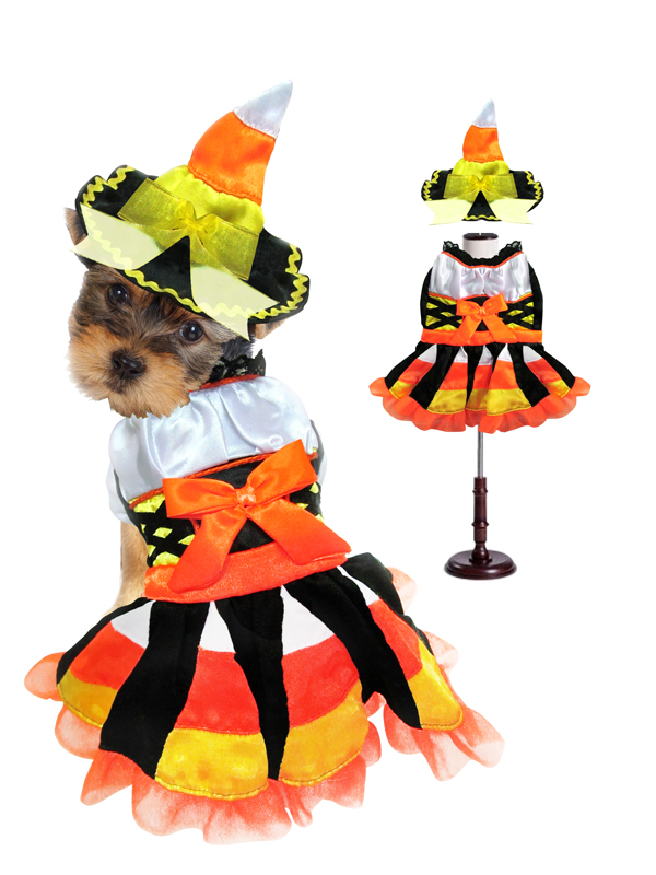 PAMPET / Puppe Love Dog Costume, Witch Candy Corn, Size 0
