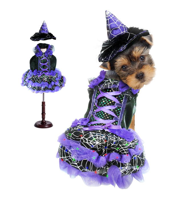 PAMPET / Puppe Love Dog Costume, Witch Purple, Size 0