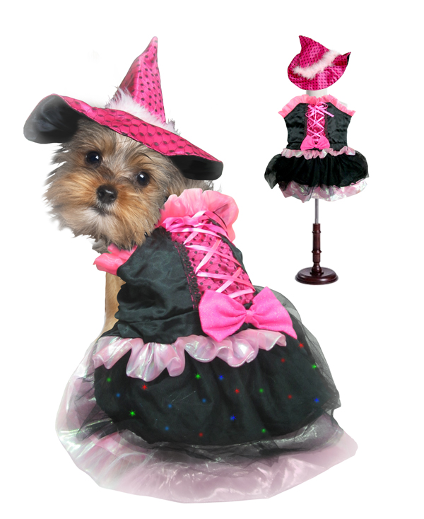 PAMPET / Puppe Love Dog Costume, Witch Pink Bow, Size 0