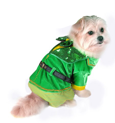 PAMPET / Puppe Love Dog Costume, Little Leprechaun Boy, Size 2