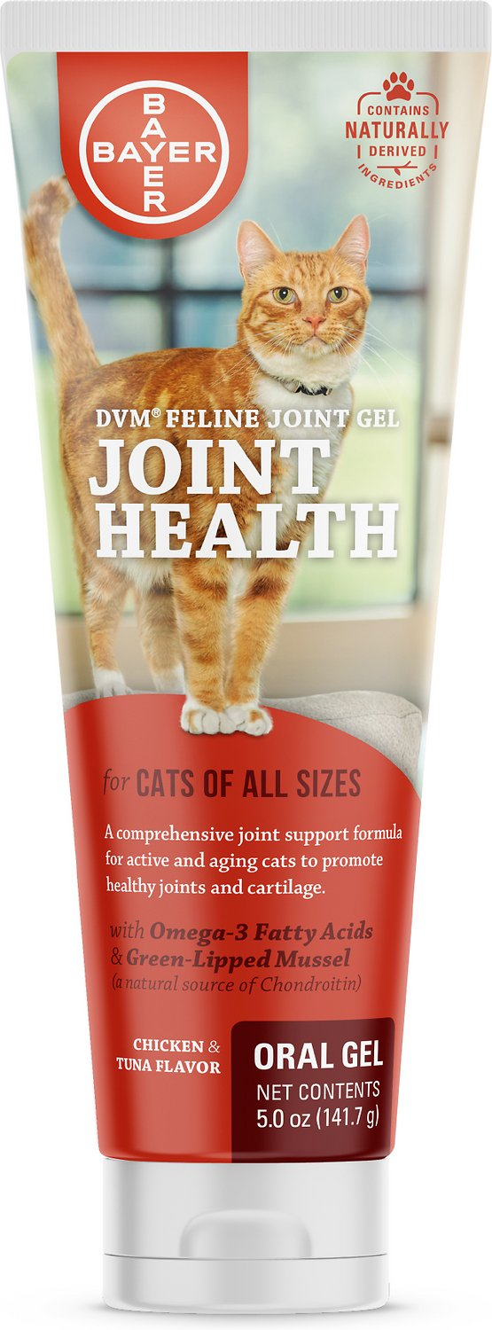 DVM Feline Joint Care Oral Gel for Cats, 5-oz tube