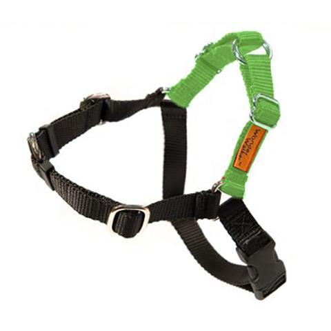 Dolan's Dog Doodads  Wonder Walker Body Halter Dog Harness, Light Green, Large, 1-in