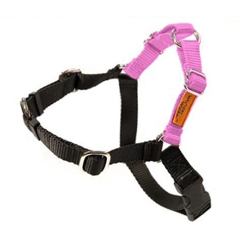 Dolan's Dog Doodads  Wonder Walker Body Halter Dog Harness, Pink, Large, 1-in