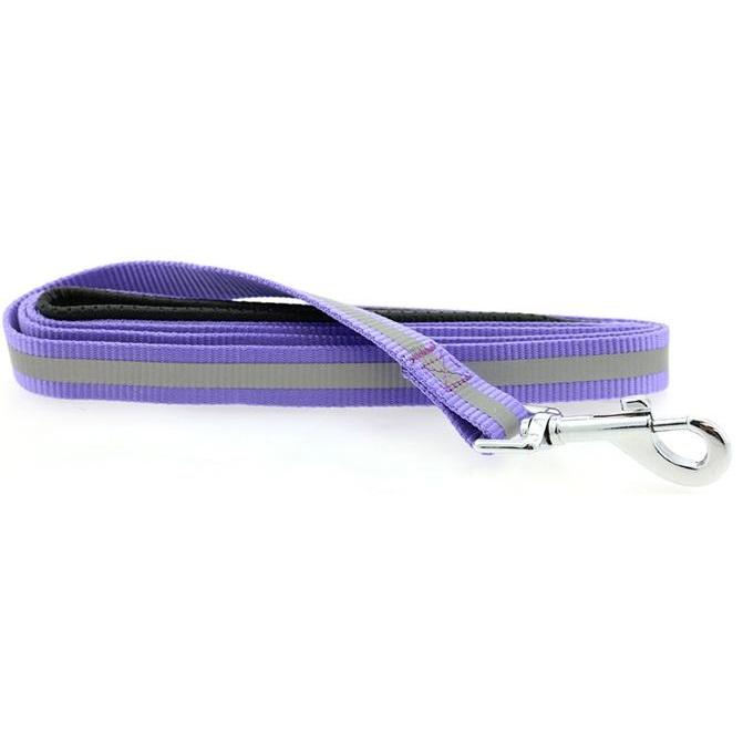 Doggie Design Basic Reflective Dog Leash, 5-ft x 3/4-in, Paisley Purple
