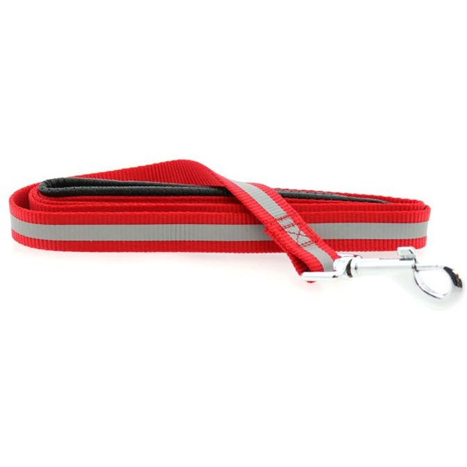 Doggie Design Basic Reflective Dog Leash, 5-ft x 3/4-in, Red