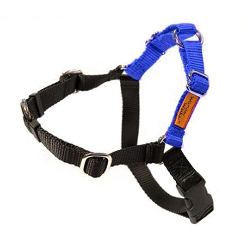 Dolan's Dog Doodads  Wonder Walker Body Halter Dog Harness, Royal Blue, Tiny, 3/8-in