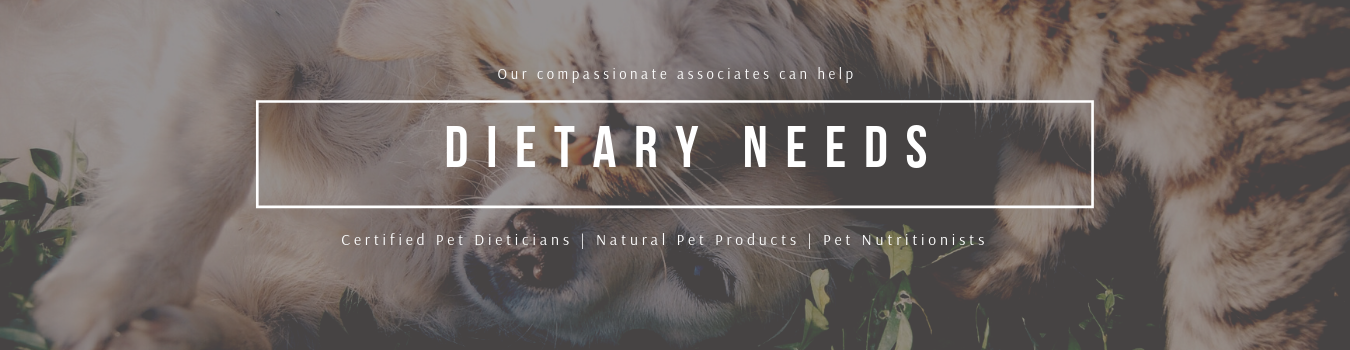 Dietary needs & certified pet dietitians